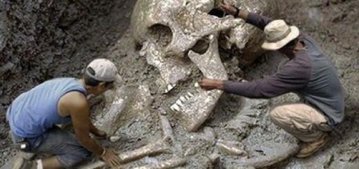 уничтожение тысяч скелетов гигантов